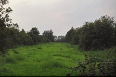 Excursie over het natuurgebied de Olde Maten en Veerslootlanden.