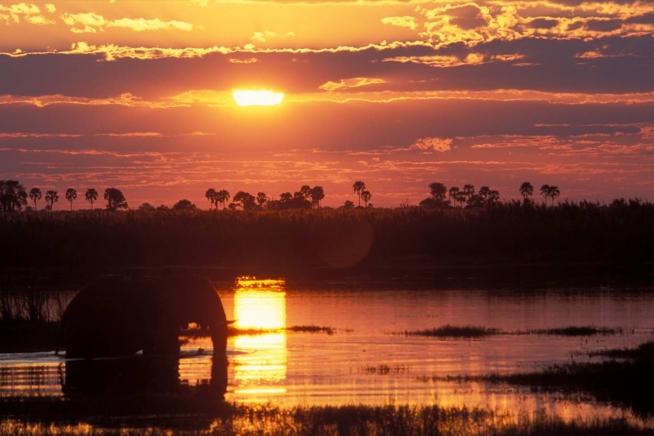 Lezing Paul van Gaalen in Wild Afrika uitgesteld!